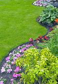 Gepflegter Hof und Garten
