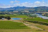 pays de vin de Nouvelle-Zélande
