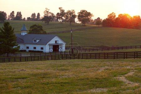 Horse Farm Sunset