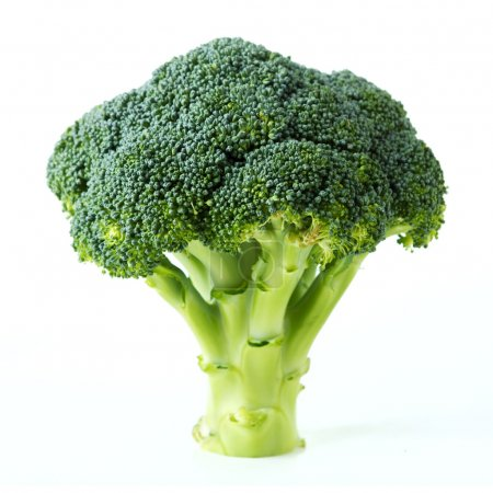 Photo for Broccoli - Royalty Free Image