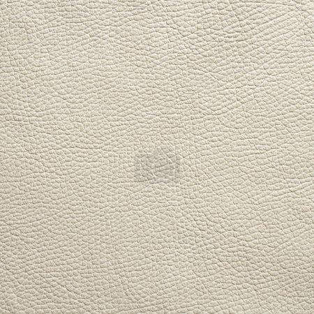 Photo pour Fond de texture de cuir - image libre de droit