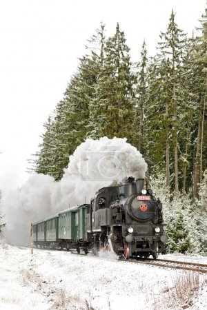 Steam train near Hradsko