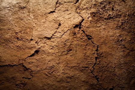 Photo for Textured background - dry cracked brown earth - Royalty Free Image