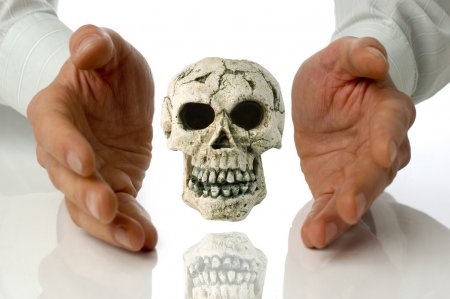 Photo for Human skull isolated between hands on white - Royalty Free Image