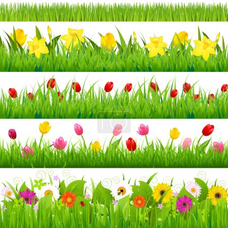 Photo for Flower Borders Set, Vector Illustration - Royalty Free Image