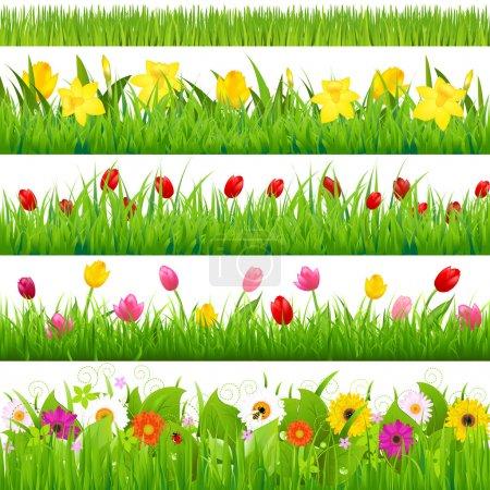 Illustration for Flower Borders Set, Vector Illustration - Royalty Free Image