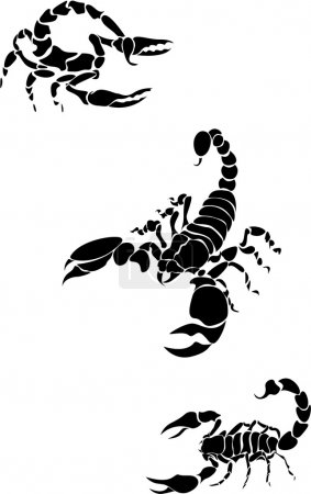 Illustration for Vector image of the scorpion - Royalty Free Image