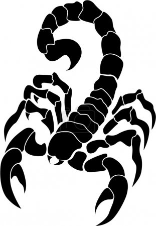 Vector image scorpion