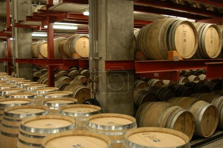 Photo for Barrels in a Californian wine cellar - Royalty Free Image