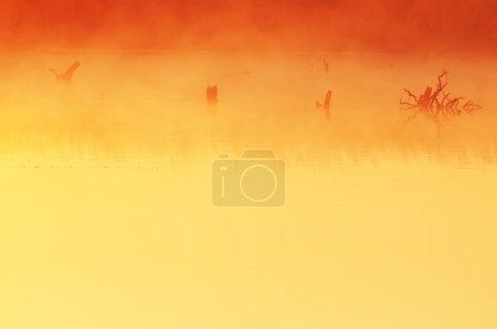 Photo pour Nature abstraite sur le lac du matin - image libre de droit