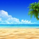 Palms on empty idyllic tropical sand beach. detail...