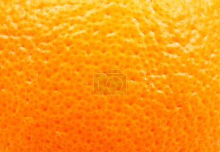 Photo pour Écorce d'orange de près - image libre de droit