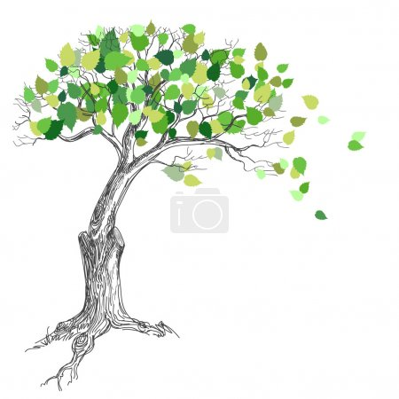 Illustration for Tree with green leaves - Royalty Free Image