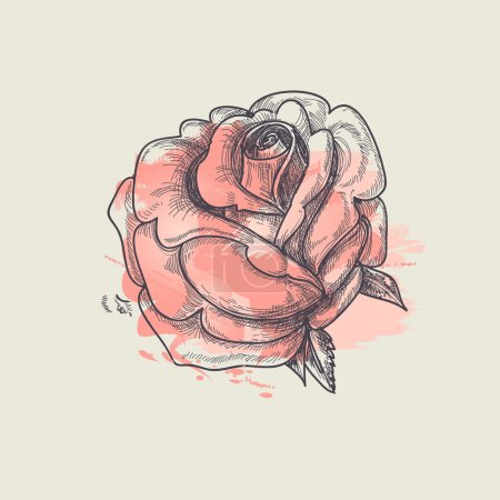 Illustration for Artistic rose vector illustration - Royalty Free Image