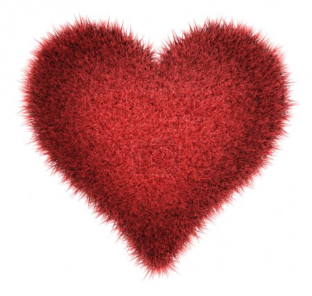 Red Shaggy Heart