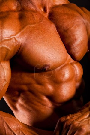 Photo for Closeup of muscular man body - Royalty Free Image
