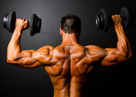 Photo for Rear view of bodybuilder training with dumbbells on black background - Royalty Free Image