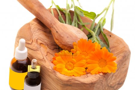Medycyna alternatywna - calendula officinalis