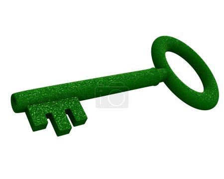 Key in green gras (3d)