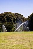 Luxus Garten: Bewässerung