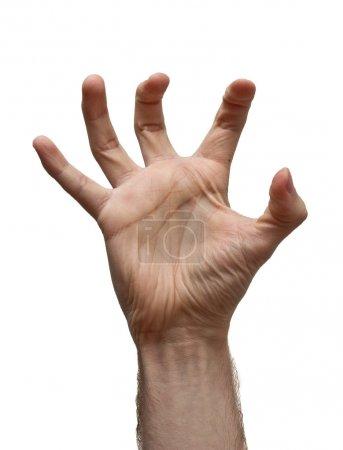 Photo pour Homme main sur fond blanc. Image isolée - image libre de droit