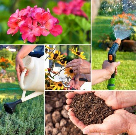 Photo pour Thème ou collage du jardin.Représenter la fertilité - image libre de droit