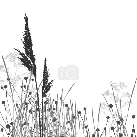 Grass silhouettes / vector / elements are separated