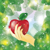Beautiful female hand holding apple vector illustration
