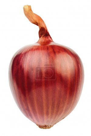 Single red onion