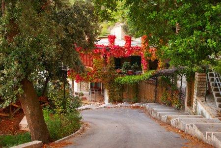Foto de Camino del sol al mar junto a árboles florecientes y casa con ventanas rojos - Imagen libre de derechos