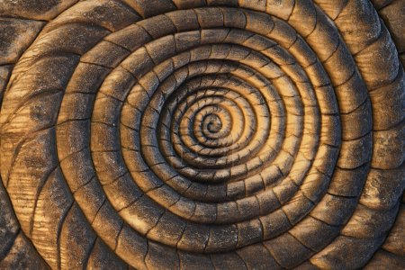 Spiral Carvings Background
