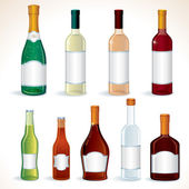 Glass Bottles with Various alcoholic drinks vector clip art isolated on white
