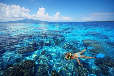 Photo pour Jeune femme plongée en apnée dans la mer bleue transparente peu profonde au-dessus du récif corallien . - image libre de droit