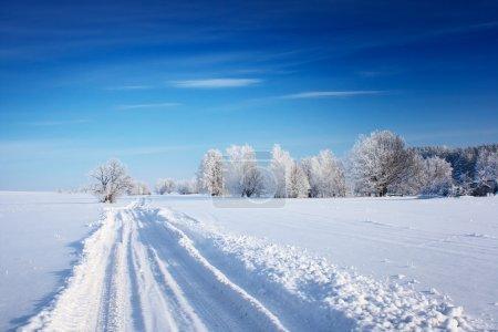 Photo pour Route de campagne à travers champ hiver avec forêt sur un horizon - image libre de droit
