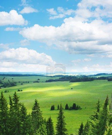 Photo pour Vert pré rural avec arbres et un ciel bleu avec des nuages, vue depuis la colline. - image libre de droit