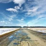 Wet spring asphalt road...
