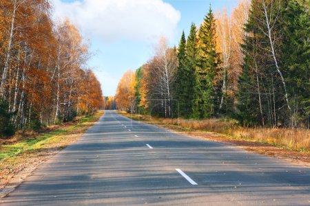 Photo pour Route asphaltée d'automne - image libre de droit