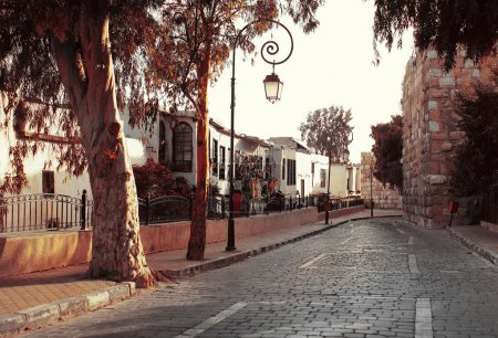 Photo for Street in old Damascus with trees - Royalty Free Image