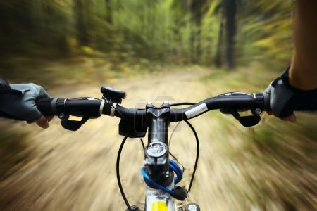Photo for Riding on a bike in forest's path - Royalty Free Image