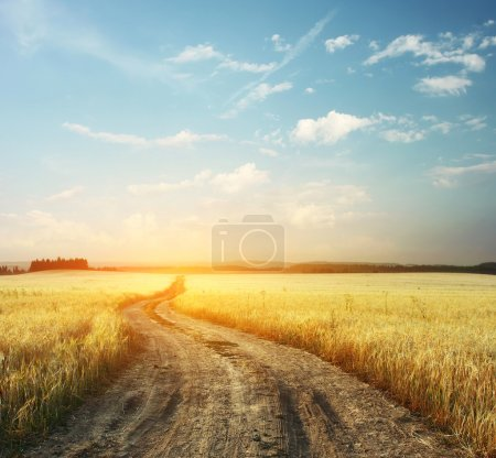 Photo for Road in field and blue sky with clouds - Royalty Free Image