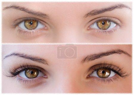 Photo pour Fermer Beaux yeux avec cils naturels et faux cils après - image libre de droit