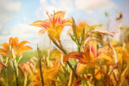 Photo for Digital Painting of orange Daylilies in field - Royalty Free Image
