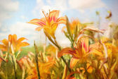 Digital painting of orange daylilies