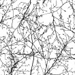 Vector seamless texture of the branches on the whi...