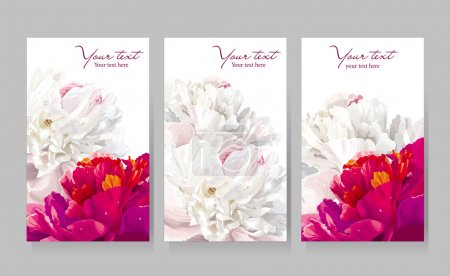 Illustration for Floral greeting cards with red and white peony flowers - Royalty Free Image