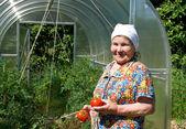 Zralá žena s zralých rajčat
