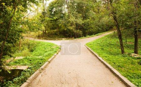 Foto de Pequeño camino al parque, divergently que se bifurcan. la foto está hecha en el otoño - octubre - Imagen libre de derechos