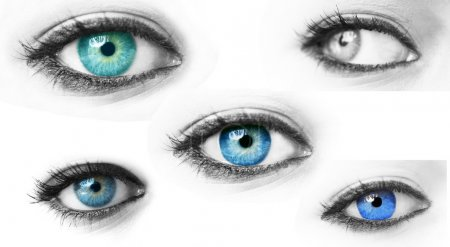 Collection of blue woman eyes isolated on white