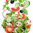 Flying vegetables - salad ingredients. Isolated on...