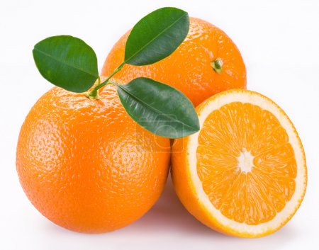 Orange fruits on a white background....